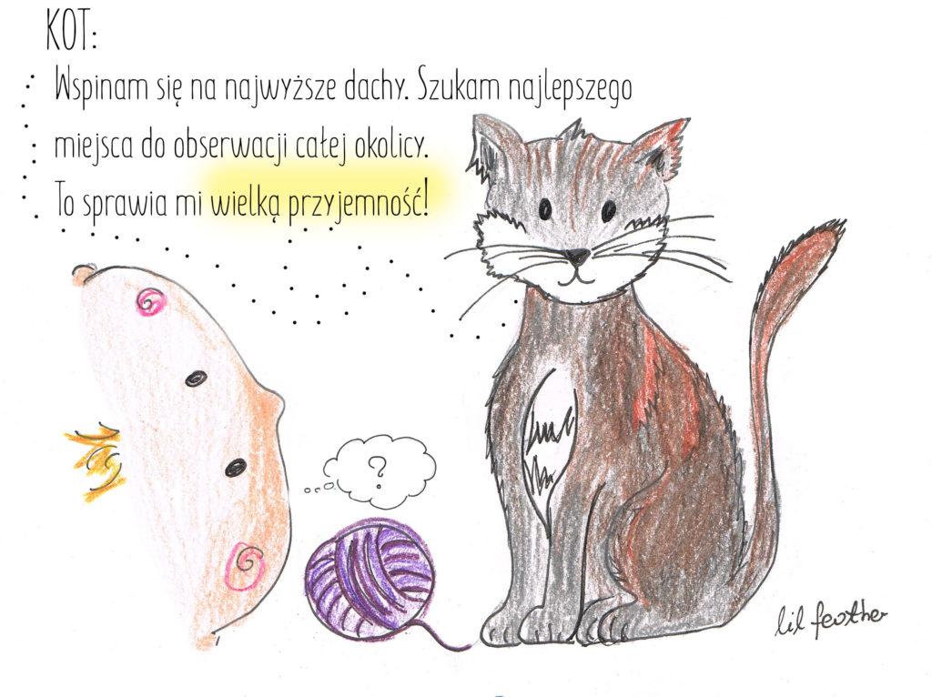 Kot bajka o szczęściu
